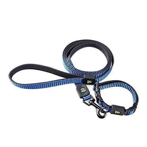 Dog Lead Pet Traction Rope wear-Resistant tensile Dog Collar Traction Rope Set,M:2.0cm×150cm×32-48cm,Green Dog Training Leash (Color : M:2.0cm×150cm×32-48cm Blue)