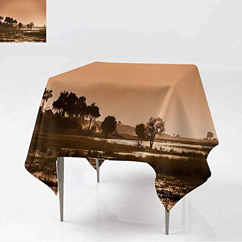 AFGG Anti-Fading Tablecloths,Okavango Delta - Sunset,for Square and Round Tables,60x60 Inch