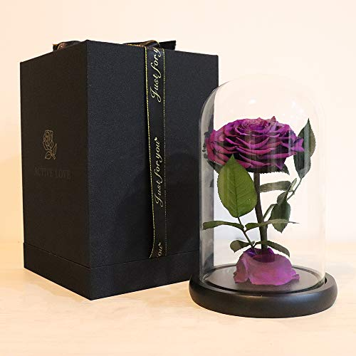 - Preserved Roses Purple Real Preserved Rose in Glass Dome with Wooden Base, Rose Preserved Never Withered Romantic Gifts for Female, Valentine's Day, Mother's Day, Birthday (9 inch, Purple)