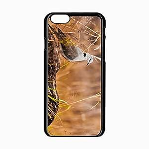 iPhone 6 Black Hardshell Case 4.7inch grass rocks Desin Images Protector Back Cover