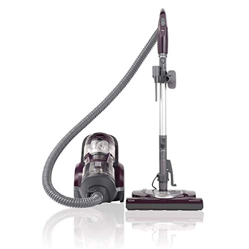 Kenmore (22614) Bagless Canister Lightweight Vacuum Cleaner, Purple (Renewed)