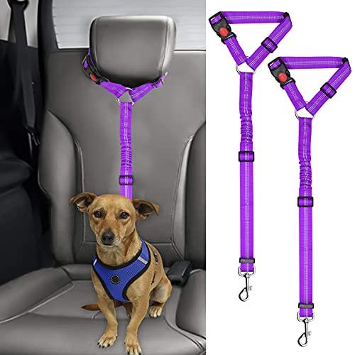 2 correas cinturon de seguridad para perros auto bungee