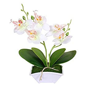 WskLinft Artifcial Butterfly Orchid, 1Pc Artificial Silk Butterfly Orchid Flower Bouquet Wedding Home Floral Decor - White 47