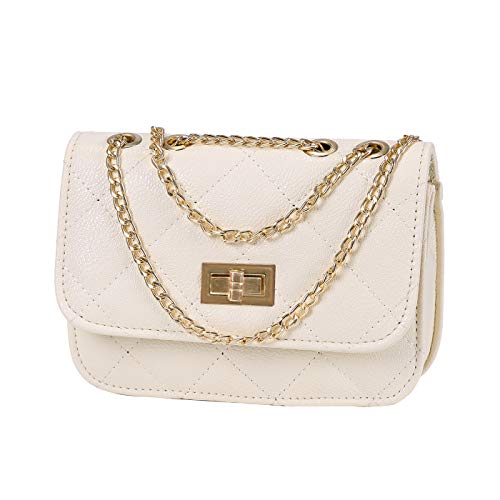 HDE Women's Small Crossbody Handbag Purse Bag with Chain Shoulder Strap (Champagne)
