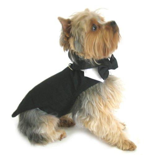 Dog Tuxedo w Formal Tails- Black, XL (Chest 21-26 )
