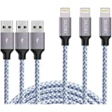 DAZHWA Phone Charger 3PACK (6FT) Nylon Braided Charging Cable Cord USB Cable Charger Compatible Phone X/8/7/6s/ 6/ Plus/ 5SE/ 5s/ 5c/ 5, Pad, Pod, and More (Silver) v (Silver)