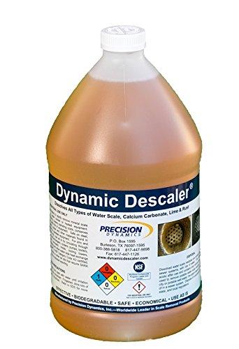 dynamic inc - 6