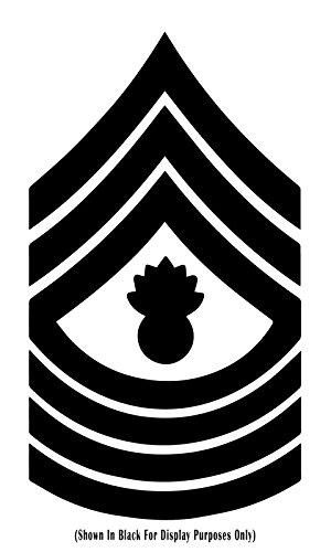 United States Marine Corps (USMC) Chevro - Master Gunnery Sergeant Usmc Shopping Results