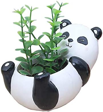 Youfui Home Decor Pot, Animal Succulent Planter Flowerpot for Home Office Desk Decoration Cute Panda