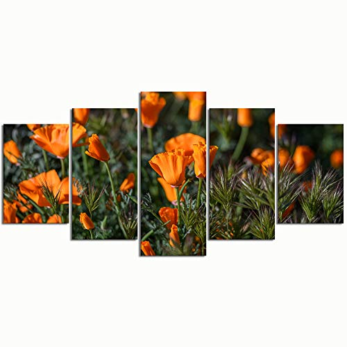 WINCAN Paintings Modern Canvas Painting Wall Art Pictures 5 Pieces California Poppies Field Flowers Wall Decor HD Printed Posters Frame