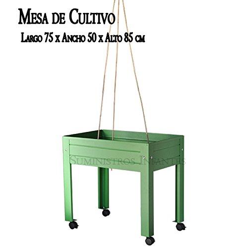 MESA DE CULTIVO COMPLETA Lacada verde. Medidas: Largo 75cm x Ancho ...
