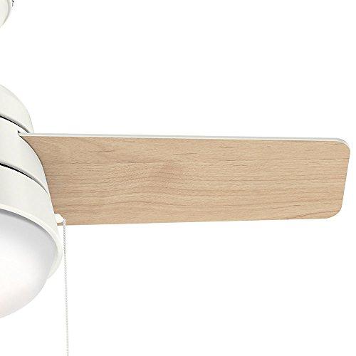 Hunter Fan Company 59301 Aker Ceiling Fan Hunter Light, 36'', Fresh White by Hunter Fan Company (Image #3)