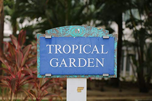 Home Comforts Peel-n-Stick Poster of San Hilton Juan Garden Tropical Vivid Imagery Poster 24 x 16 Adhesive Sticker Poster Print