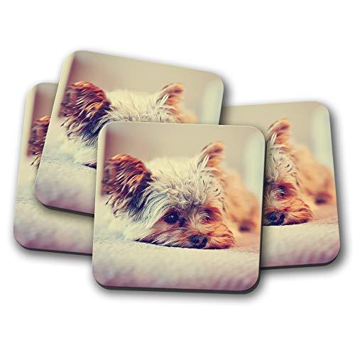 (4 Set - Yorkshire Terrier Coaster - Yorkie Dog Puppy Cute Pet Animal Gift #15621)