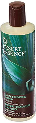 Desert Essence Tea Tree Daily Replenishing Shampoo, 12 Ounce - 6 per case.