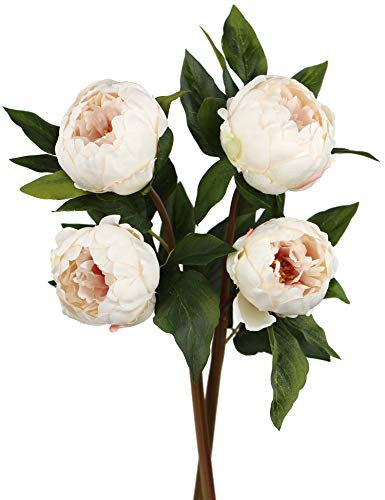 Rinlong Artificial Peony Vintage Silk Flowers Stems 2pcs Cream for Floral Arrangements Home Decor Bridal Bouquet
