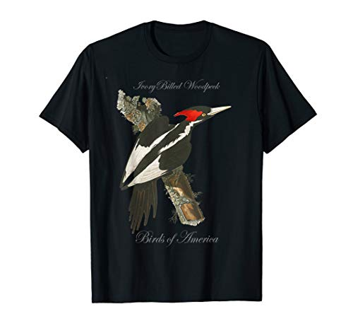 (Ivory Billed Woodpecker - Birds of America Series T-Shirt)