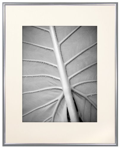 Gallery Aluminum Frame (MCS 12x16 Inch Gallery Aluminum Frame with 8x12 Inch Mat Opening, Silver (44261))
