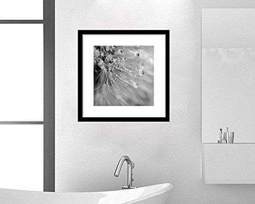 Dandelion Print 8x8, 10x10, 12x12, 20x20, Black and White Art, Mist Rain Water Drops and Bubbles Macro Photography, Grey Bathroom Wall Art, Shabby Chic Wall Decor, Nursery, Baby Girl Artwork