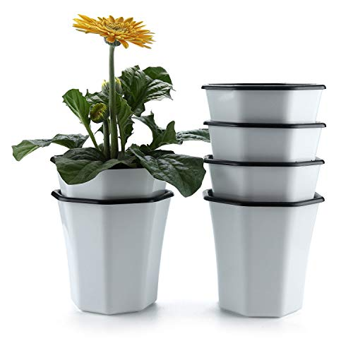 T4U 5 Inch Plastic Self Watering Planter for Indoor Plants, Set of 6 Small White Flower Pot Seedling Nursery Container for Orchid Herb Aloe Home Office Windowsill Balcony Decor Christmas Gift