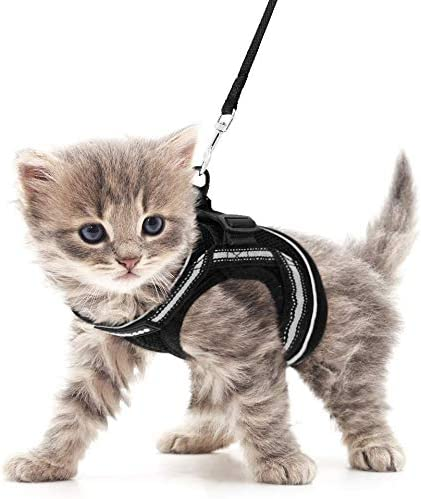 rabbitgoo Cat Harness and Leash Set for Walking Escape Proof, Adjustable Soft Kittens Vest with Reflective Strip for Cats, Step-in Comfortable Outdoor Vest 31