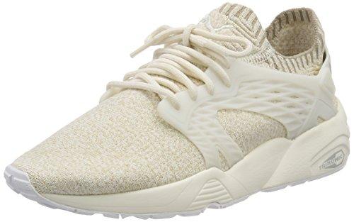 Blaze Damen Evoknit Sneaker Cage Puma qOXx80q