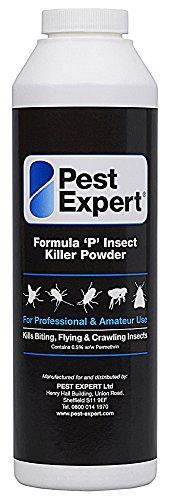 Pest Expert Formula 'P' Wasp Killer Powder XL 300g pack size (HSE approved and tested - professional strength product)