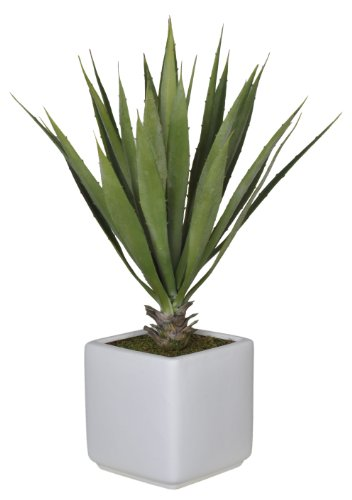 UPC 613399804816, House of Silk Flowers Artificial Baby Yucca in White Cube Vase