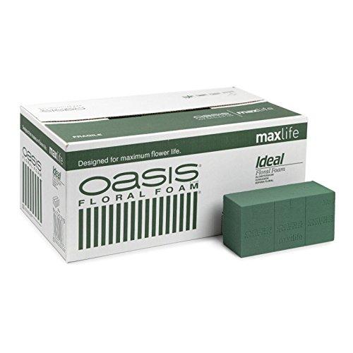 Oasis scatola spugna perfetta oasi 20 mattoni * c.1