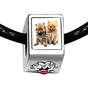 Chicforest Silver Plated Chow Chow Twins Photo Red Zircon Crystal July Birthstone Flower Charm Beads Fits Pandora Charm Bracelet