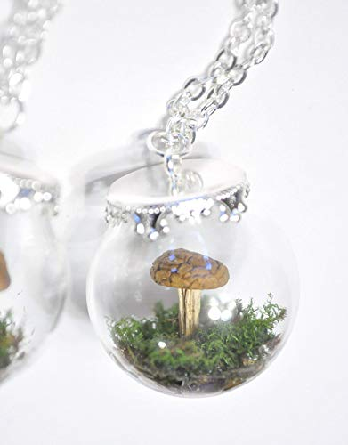 Real Mushrooms Physalacriaceae Family Honeysuckle Berries and Sphagnum Moss Handmade Resin Specimen Pendant Necklaces