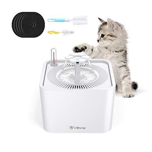 isYoung Cat Water Fountain,84oz/2.5L Quiet Automatic Pet Fountain with 5 Replacement Filters and Cleaning Brushes for Cats,Dogs