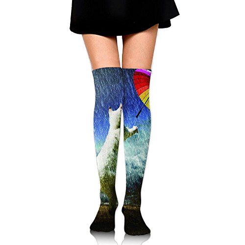 Cat Chasing The Rainbow Umbrella Women's Fashion Over The Knee High Socks (60cm) from Nakgn