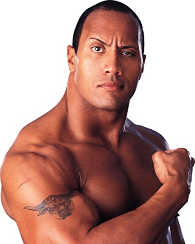 WWE The Rock Halloween Costumes