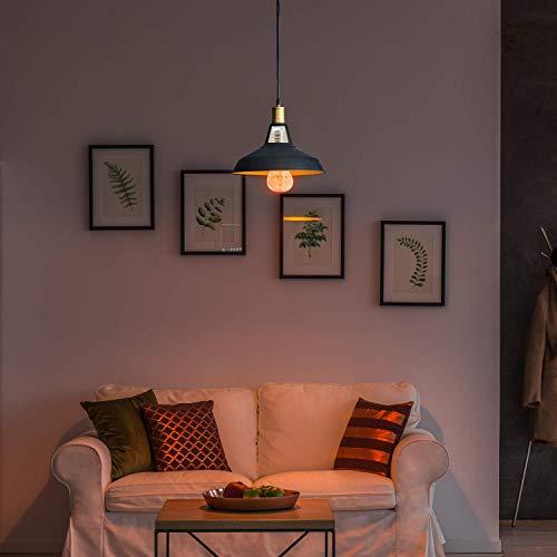 Himalayan Glow Salt Lamp LED Light Bulbs 60-Watt Equivalent, Warm Amber Glow, 6 Pack, 6 Pack