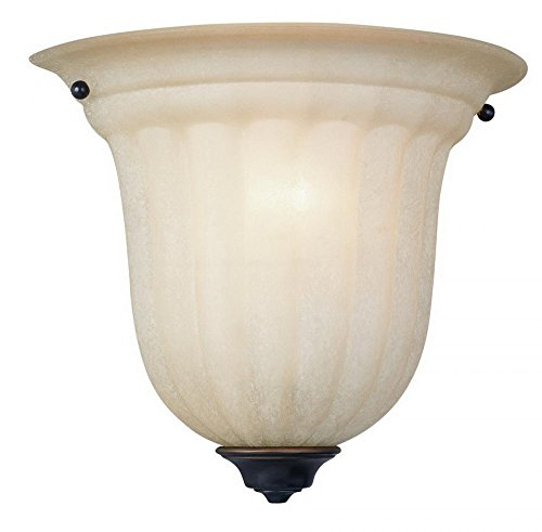 Dolan Designs 227-78 Richland 1 Light Wall Sconce, Bolivian 78 Bolivian Finish