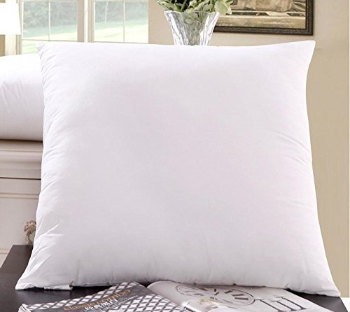Amazoncom Best Emart 4 Pack 20x20 Square Pillow Inserts Made In