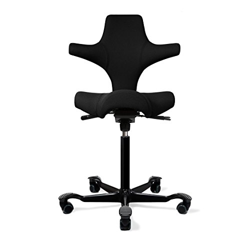 sc 1 st  buy Adjustable Standing Desk & Capisco Ergonomic Office Chair with Saddle Seat - Standing Desk Height