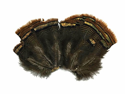 Tail Feather Costume (Moonlight Feather | 2 Sets - Natural Brown Bronze Merrium Small Wild Turkey Tail Feather Clump Smudging, Headdress)
