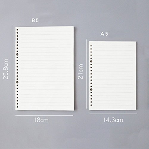 JUNDA Refill Papers,A5 Size 20 Holes Grid Creamy White Paper for Loose Leaf Binder Notebook,60 Sheets/Set,3 Sets by JUNDA (Image #3)