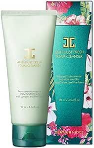 jayjun anti dust fresh foam cleanser 90ml