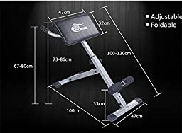 Toexy Adjustable Back Extension Fitness Equipment Hyperextension Roman Chair.