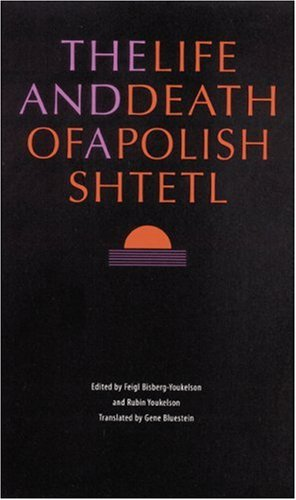 The Life and Death of a Polish Shtetl ebook
