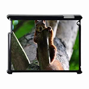 Customized Back Cover Case For iPad 2 3 4 Hardshell Case, Black Back Cover Design Squirrel Personalized Unique Case For iPad 2