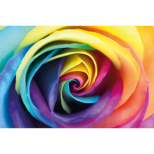 Great Art Wall Decoration Rainbow Rose Wallpaper Floral Mural Natural Colorful Design Poster Roses Colors (55 Inch x 39.4 Inch/140 cm x 100 cm)