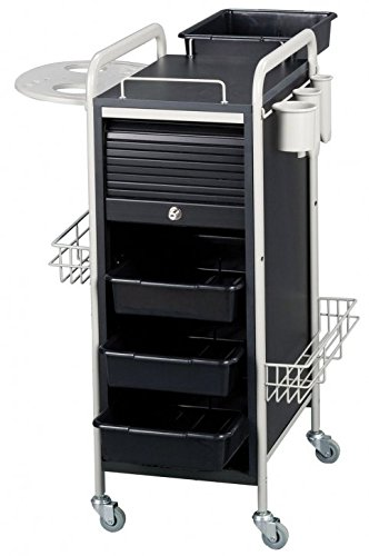 personal assistant trolley - 2