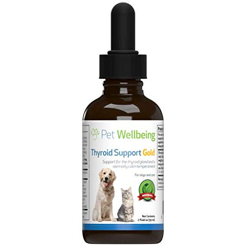Support Pet - Pet Wellbeing - Thyroid Support Gold for Cats - Natural Support for Feline Thyroid Gland and Normal Calm Temperament - 2oz (59ml)