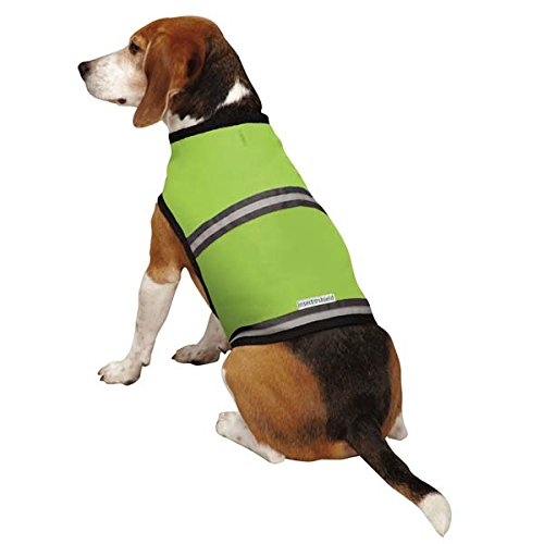 Insect Shield Insect Repellant Protective Safety Vest for Protecting Dogs from Fleas, Ticks, Mosquitoes & More - Insects Strip