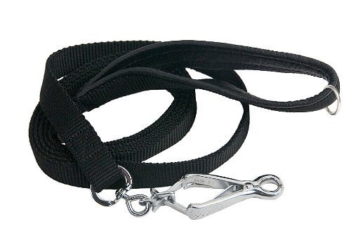 Dean & Tyler Padded Puppy Black Padding Single Ply Dog Leash with Black Stainless Ring on Handle and Herm Sprenger Snap Hook, 4-Feet by 3 4-Inch
