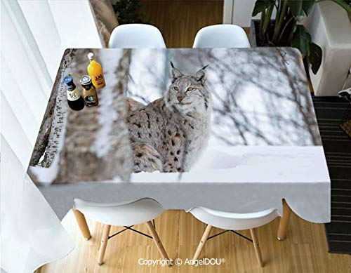 AngelDOU Fashion Durable Polyester Printed Tablecloth European Lynx Snowy Cold Forest Norway Nordic Country Wildlife Apex Predator for Kitchen Dining Room Outdoor Camping,W55xL55(inch)